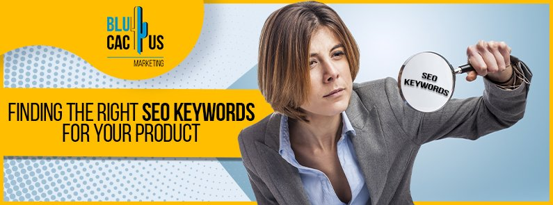 BluCactus - SEO Keywords - title