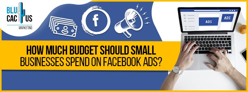 BluCactus - Facebook Ads - title