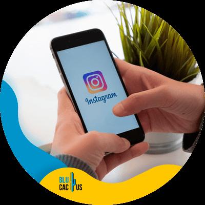BluCactus - social media