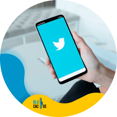 BluCactus - how often should you post on social media - cellphone working