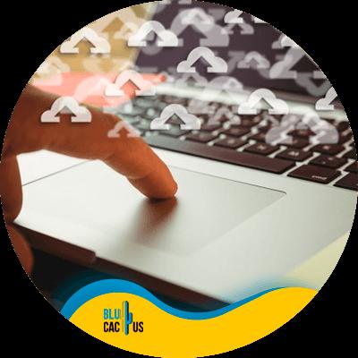 BluCactus - cloud accounting - contact us
