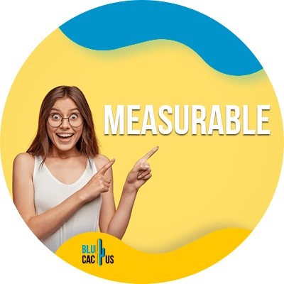 BluCactus - present a digital marketing strategy - Measurable