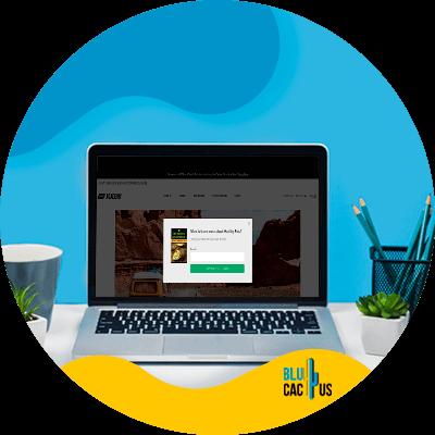 BluCactus - Audience Growth - Free ebook