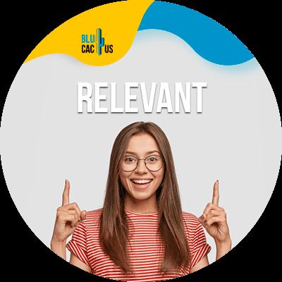 BluCactus - present a digital marketing strategy - Relevant