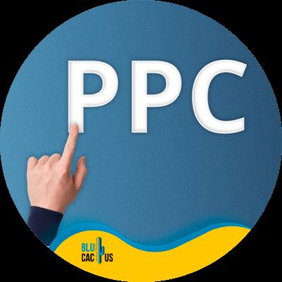 BluCactus - present a digital marketing strategy - PPC