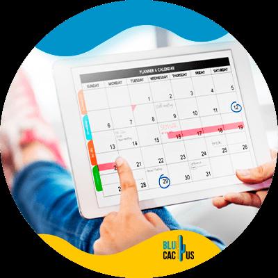 BluCactus - calendar