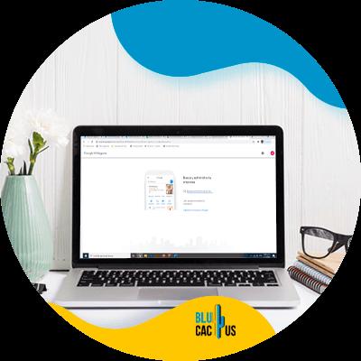 BluCactus - Create new website