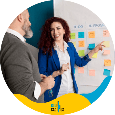 BluCactus - marketing project management - important data