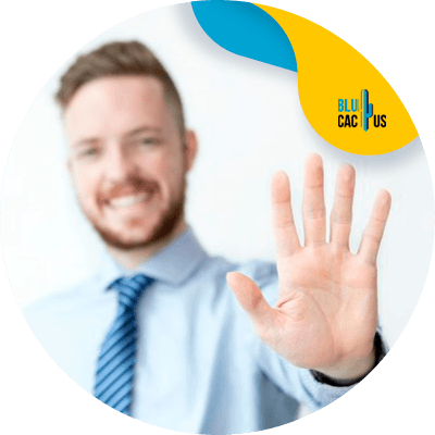 BluCactus - buyer persona - important data