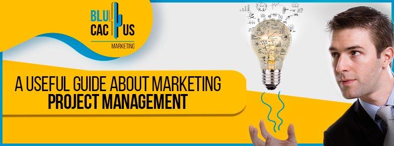BluCactus - marketing project management - title