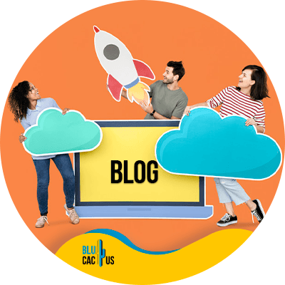 BluCactus - best hosting plan for bloggers - Blog