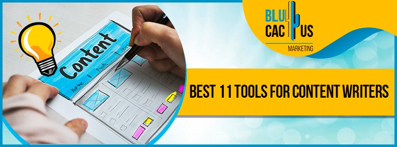 BluCactus - content creation tools - title
