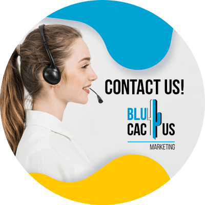 BluCactus - design a product page - contact us