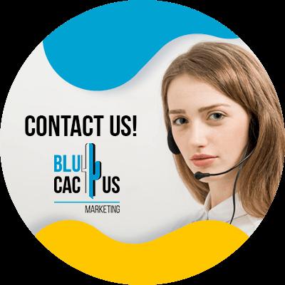 BluCactus - fashion photography - contact