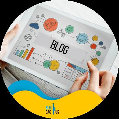 BluCactus - strategies for accountants - important data