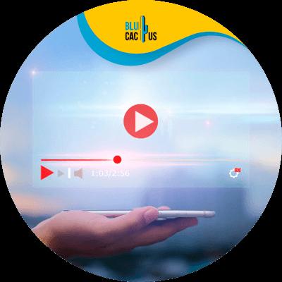 BluCactus - Video Creation - important data