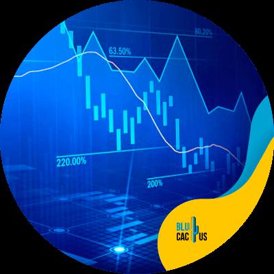 BluCactus - content plan for social media - important data