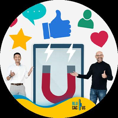 BluCactus - content creation tools - important data