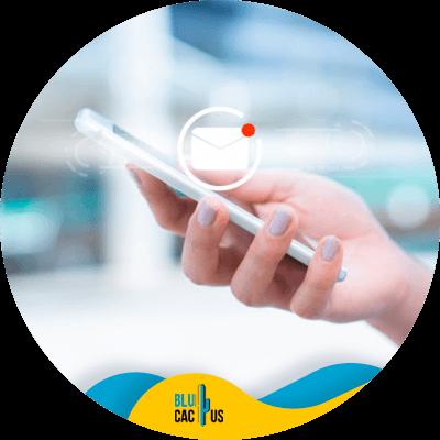 BluCactus - marketing funnel - important data