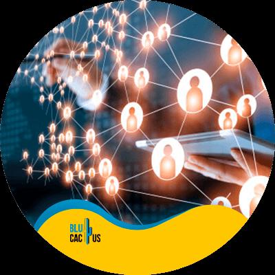 BluCactus - seo for nonprofits - important data