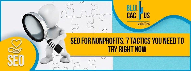 BluCactus - seo for nonprofits - title