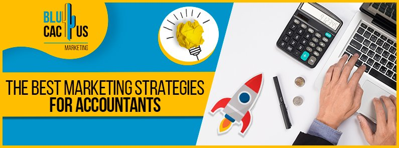BluCactus - strategies for accountants - title
