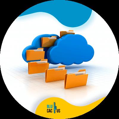 BluCactus - Cloud