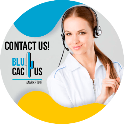 BluCactus - Instagram Expert - contact us