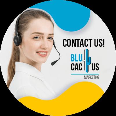 BluCactus - Fashion Marketing Facts - important data