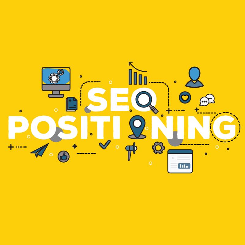 Blucactus - Digital Marketing Agency - SEO positioning