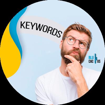 BluCactus - Star creating content around keywords