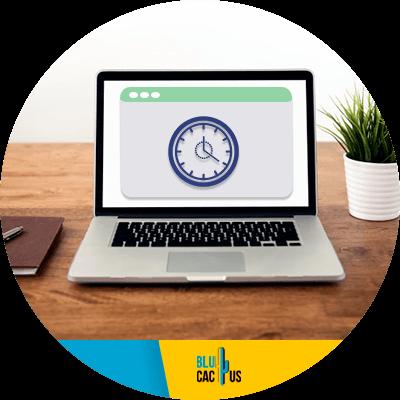 BluCactus - Speed your website