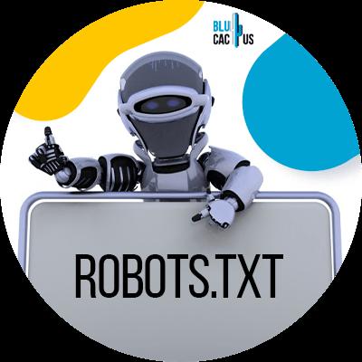 BluCactus - SEO Hacks nobody will tell you - Create robots.txt file