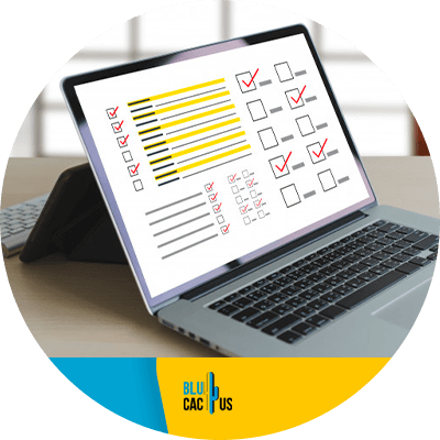 BluCactus - Keep auditing your site
