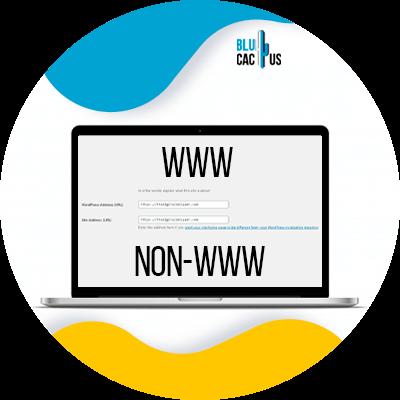 BluCactus - Www vs non-WWW