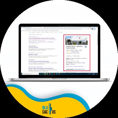 BluCactus - Optimize your NAP - Laptop showing