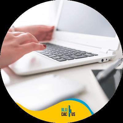 BluCactus - Start a blog