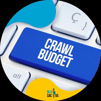 BluCactus - Improve your crawl budget