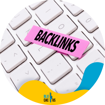 BluCactus - Keep building backlinks