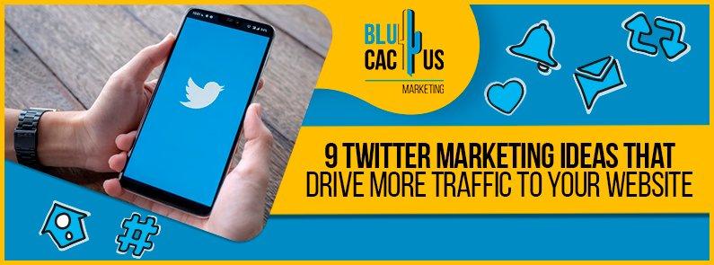 BluCactus - Twitter Marketing Ideas - title