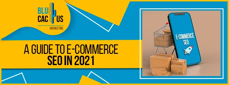 Blucactus - A guide to e-commerce seo in 2021 banner