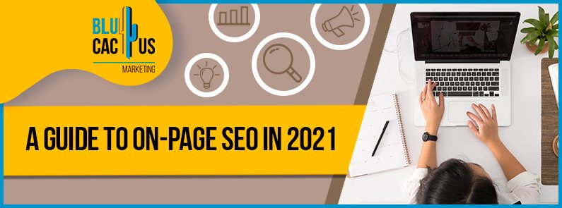 Blucactus - A guide to on-page seo in 2021 banner