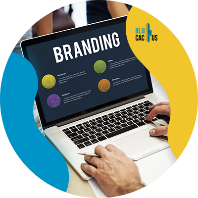 Blucactus - elaborate company branding - B2B Manufacturers Can Sell More, Here's How