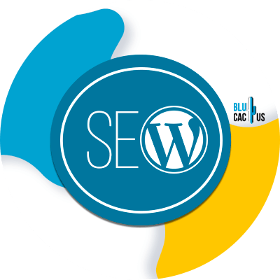 BluCactus - Basics of WordPress SEO