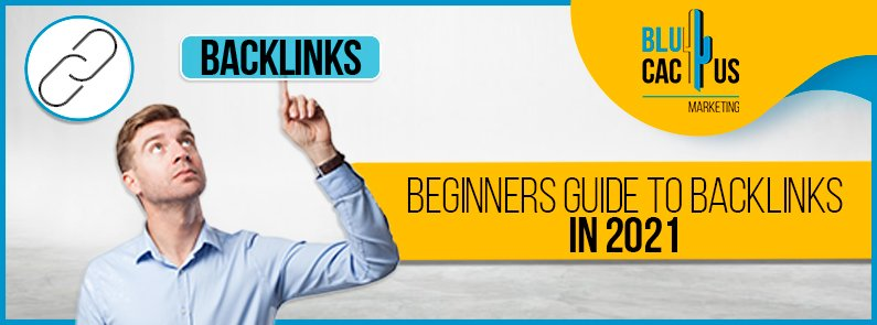 BluCactus - guide-to-backlinks - title