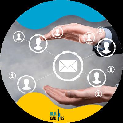 Blucactus - Build an email list