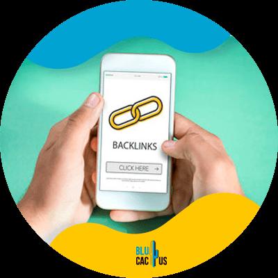 Blucactus - build more backlinks