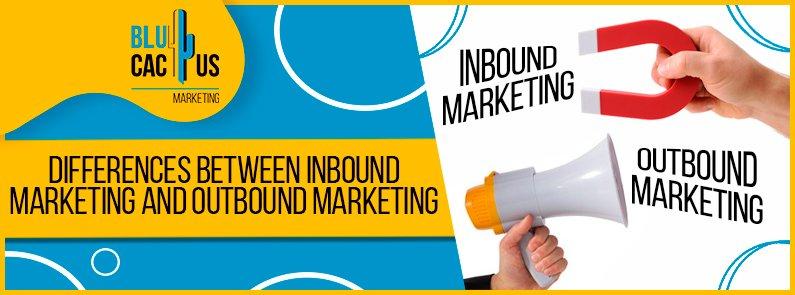 BluCactus - Inbound Marketing and Outbound Marketing - banner