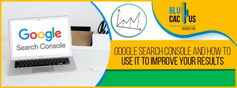 BluCactus - Google Search Console - title