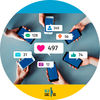 BluCactus - followers on Telegram - data